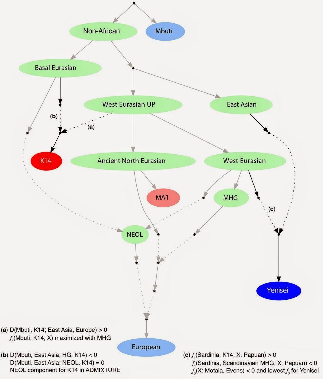 Dienekes anthropology blog genome of kostenki 14 an upper dienekes anthropology blog genome of kostenki 14 an upper paleolithic european seguin orlando korneliussen sikora et al 2014 ccuart Choice Image