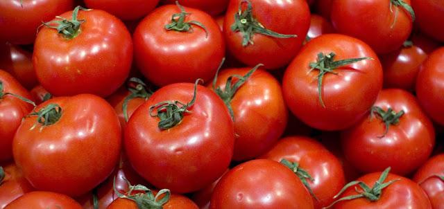 Tomates, plantas y biologia