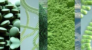 Τρόποι αποτοξίνωσης από τα χημικά των αεροψεκασμών (Chemtrails)
