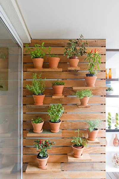 horta em jardim vertical : COLIBRI: Aprenda a cultivar ervas e temperos nas paredes ...