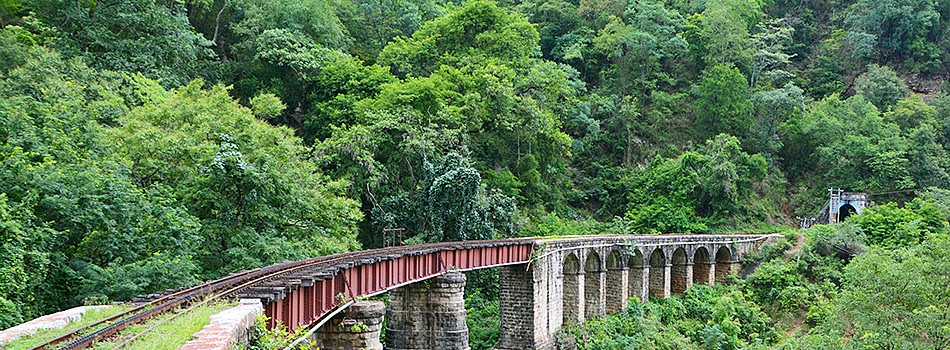 Nilgiri Mountain Railway trekking trough truly rocky terrain in deep forest