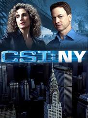 Ver CSI New York 8x18 Sub Español Gratis
