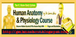 How To Learn Anotomy and Physiology Quickly and Easily...