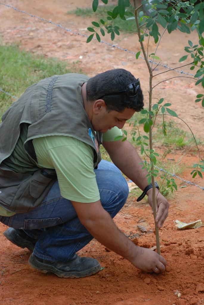 Plantio de mudas nativas na Rua Mato Grosso