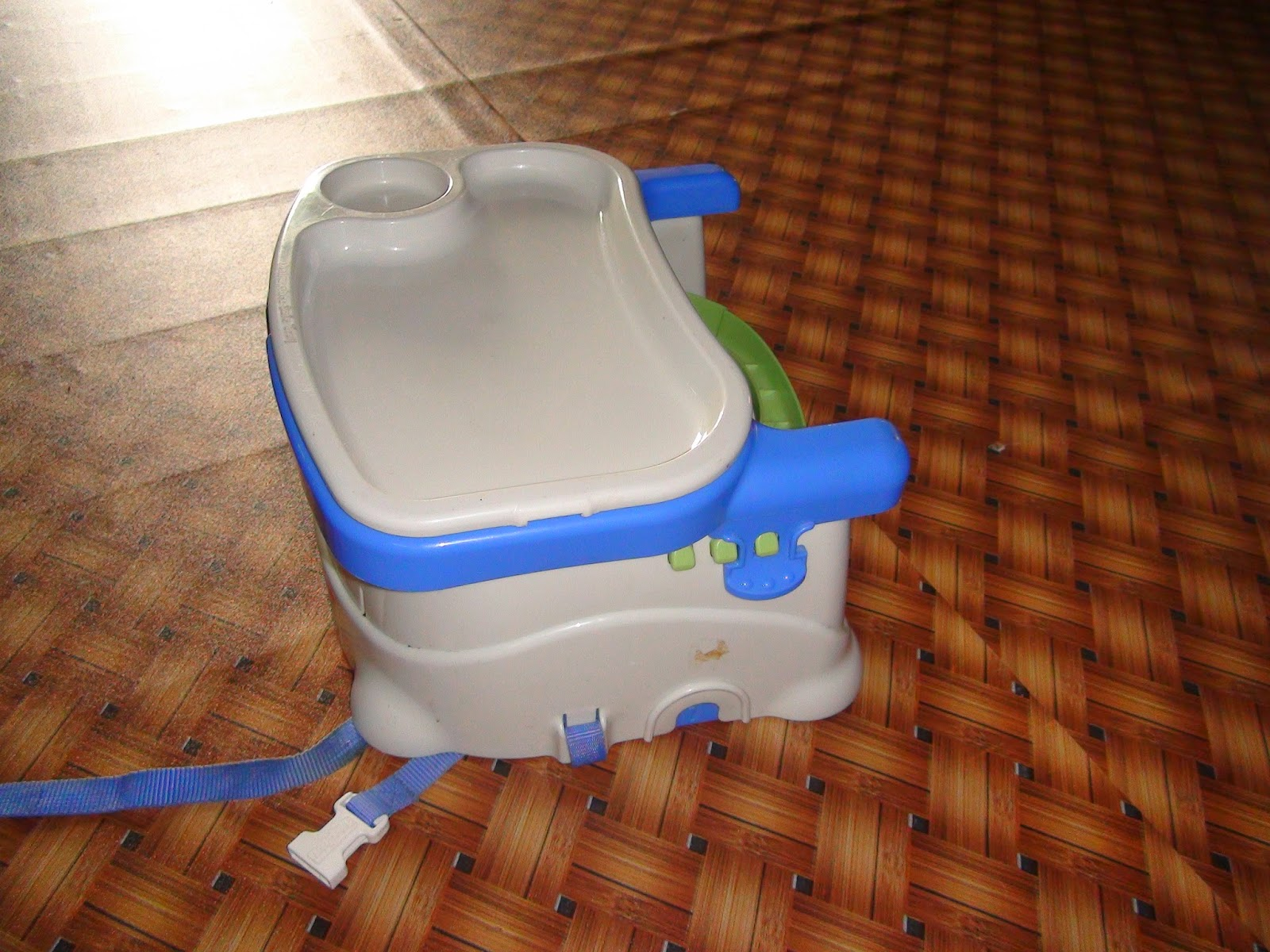 Behind Those Eyes Used Premium Fisher Price Healthy Care Deluxe Blue Booster Seat