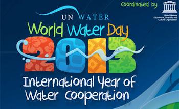 Ano Internacional da Cooperação da Àgua