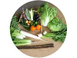 野菜セットの販売