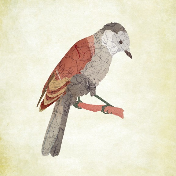 11-Gray-Jay-Jason-LaFerrera-Cartography-Shaped-to-make-Map-Animals-www-designstack-co