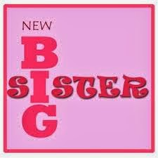New Big Sister Gift Ideas Gift Ideas To Celebrate New Big