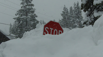 stop sign buried in snow