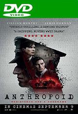 Operación Anthropoid (2016) DVDRip