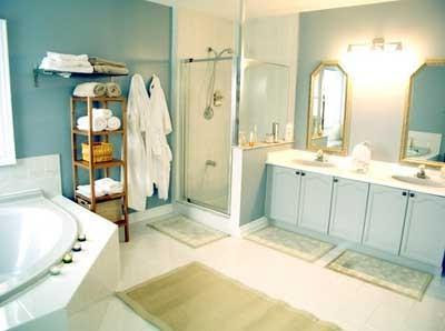 Bathroom Design Programs on Feel The Different Little Bathroom Design Thoughts Are As Follows