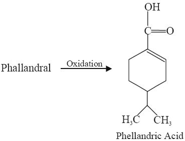 phellandric acid