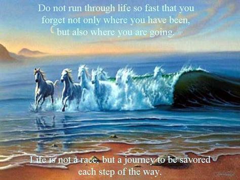 Life Journey Quotes 3