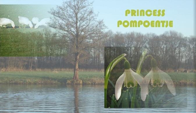 Princess Pompoentje