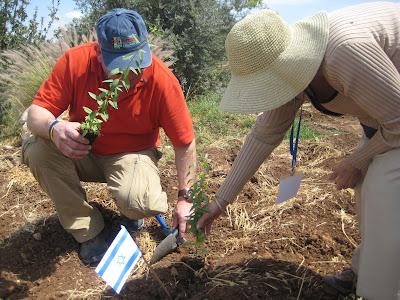 Neot Kedumim planting