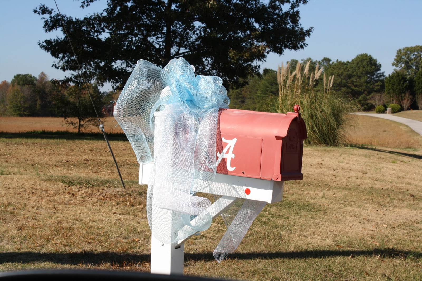 baby boy, baby shower, mail box bow