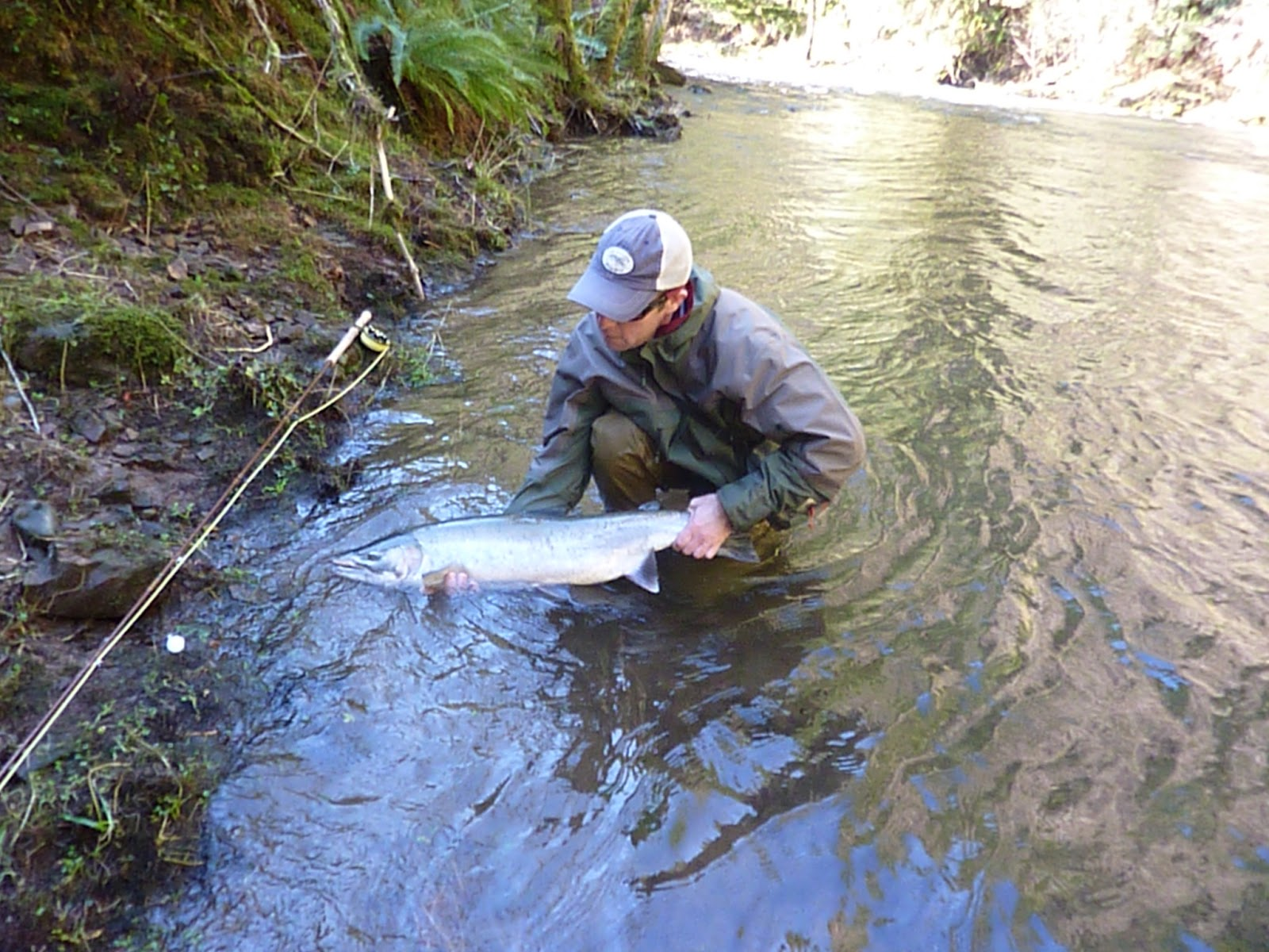 Brian marz 39 s fly fishing oregon blog winter steelhead fly for Oregon steelhead fishing