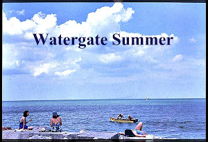Watergate Summer