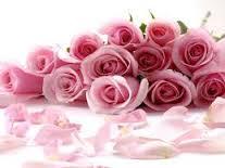imagenes de rosas con pensamientos bonitos