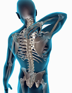 Importance of X-Ray for Chiropractor