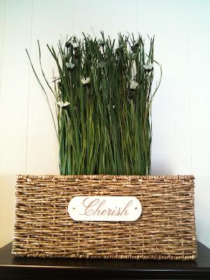 Grassy Flowers