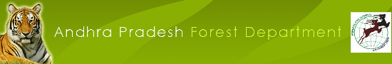 AP Forest Recruitment logo