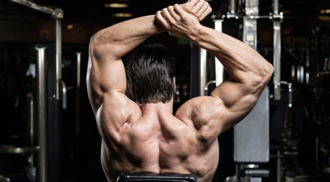 Info On The Best Shoulder Workout For Mass Lose Wieght Fast Tips