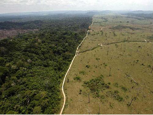 deforestación-amazonia.jpg