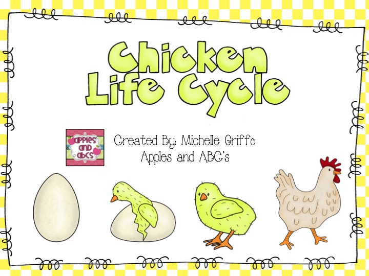 Simple Life Cycle of a Chicken Unit Apples and ABCs – Chicken Life Cycle Worksheet