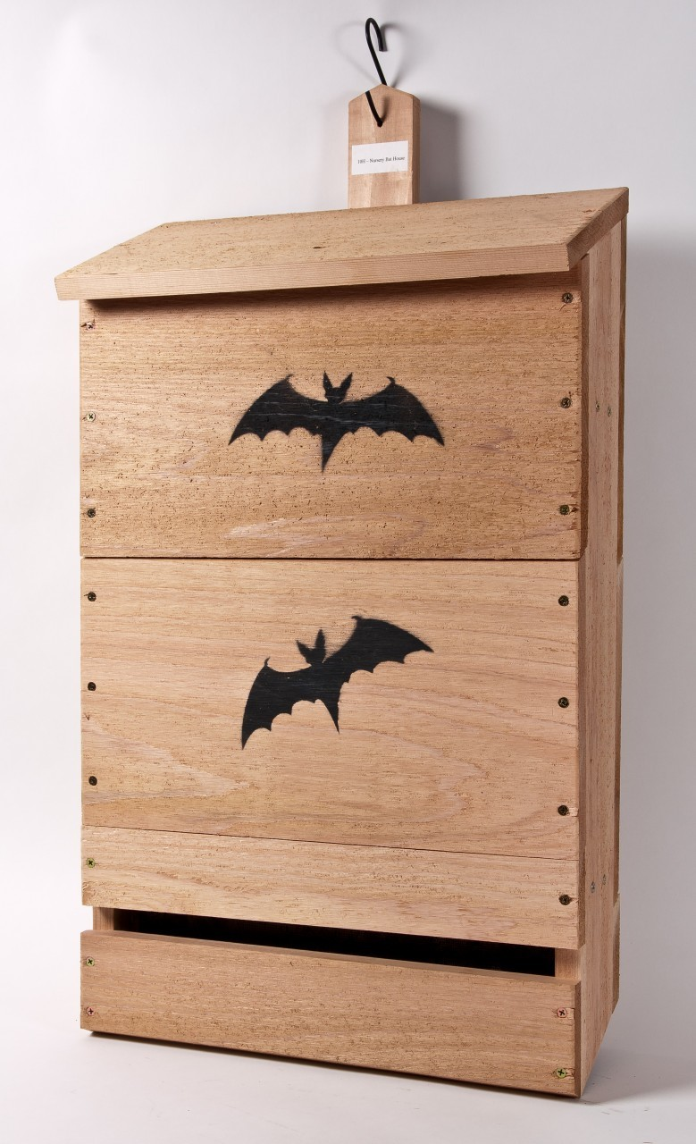 bats white nose syndrome and technology bat houses