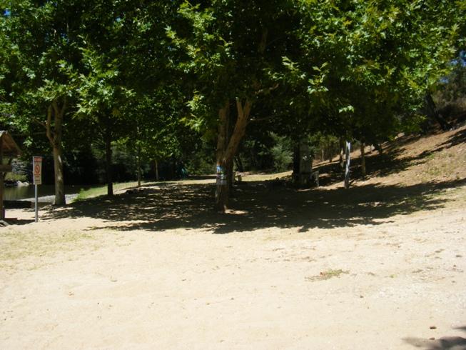 Zona de areal e sombra na Praia Fluvial de Pego das Cancelas