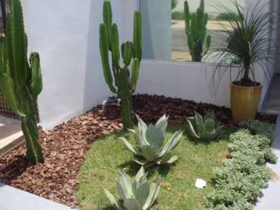 flores jardim exterior : flores jardim exterior: Casa Clean: Jardins Externos!!! Fachadas com plantas, gramas e pedras
