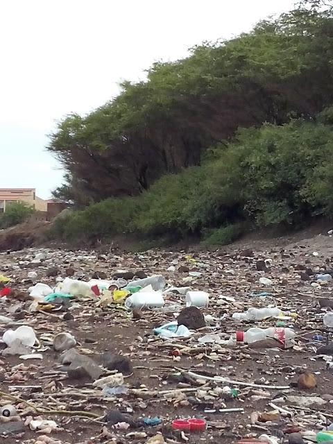 Gamboa - Festival de Lixo
