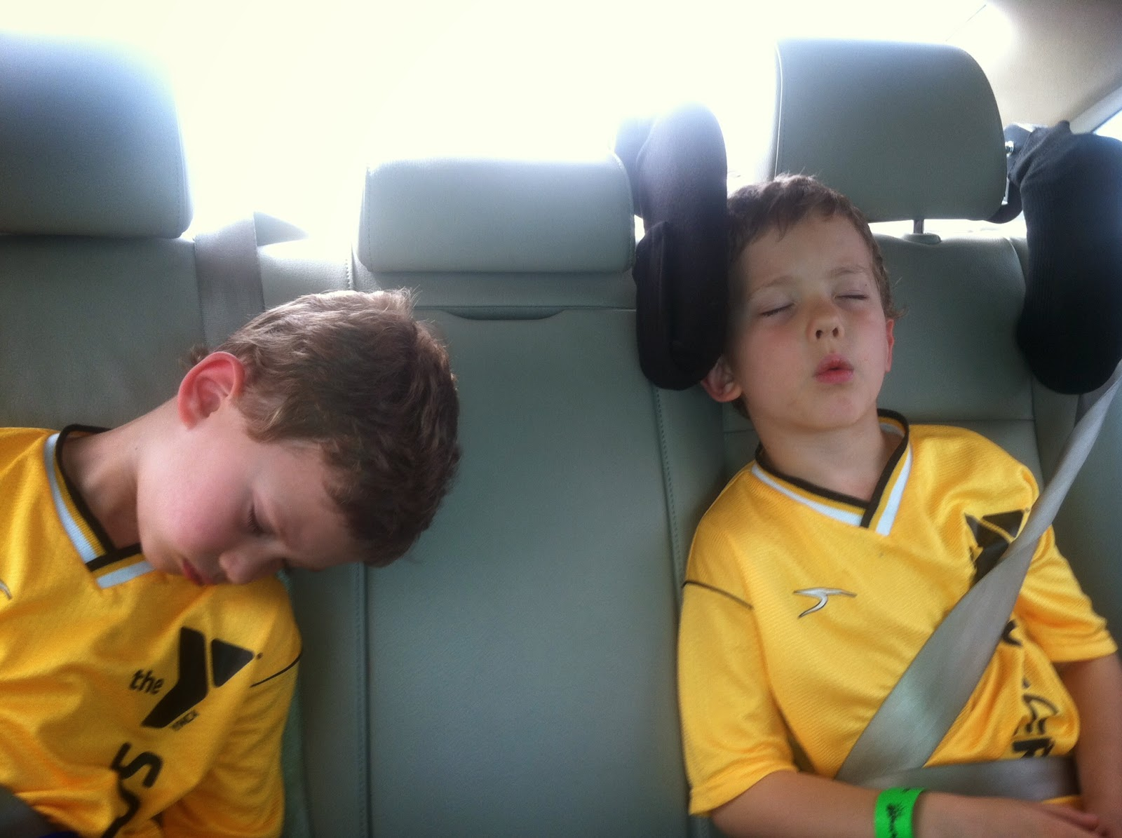 Cardiff Car Seat Headrest