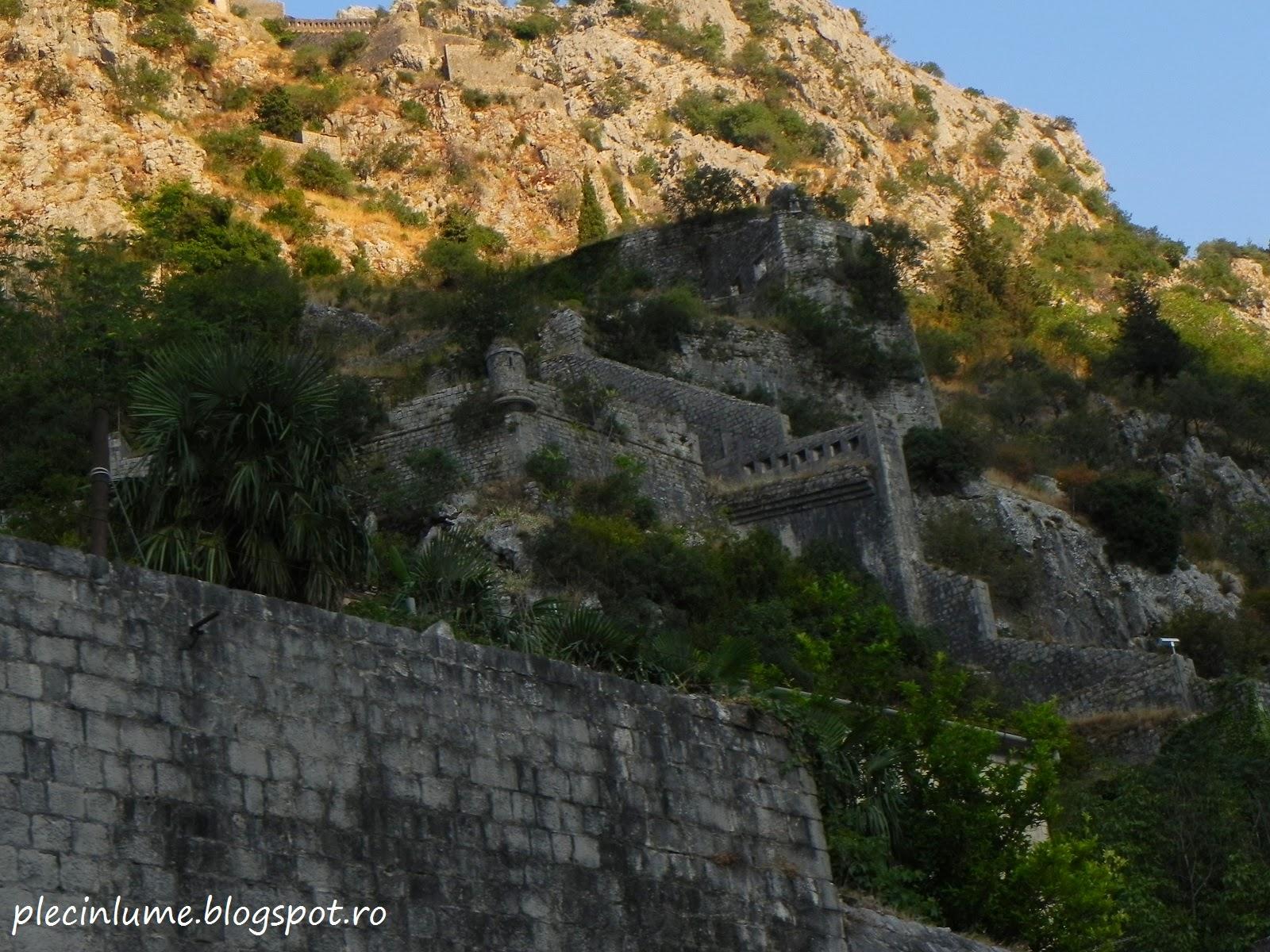 Cetatea din Kotor