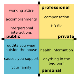 Public professional things: working attire, accomplishments, interpersonal interactions.  Private professional things: compensation, HR file.  Public personal things: outfits you wear outside the house, causes you support, your family.  Personal private things: health information, anything in the bedroom.