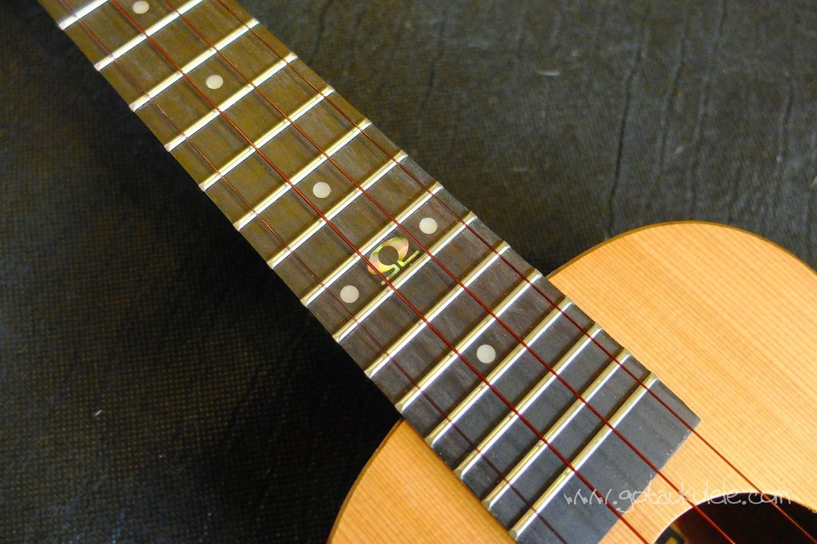 Omega Zedro II Concert Ukulele fingerboard