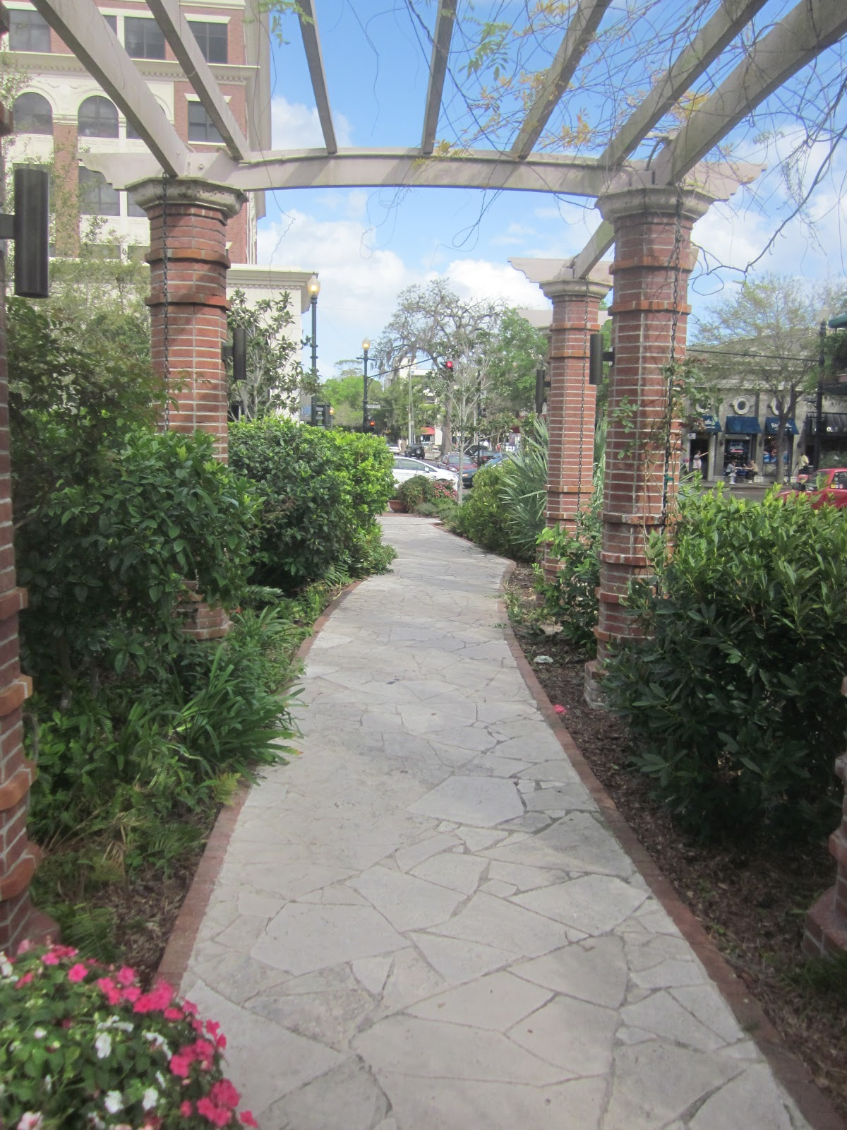 glimpses winter park rose garden the orlando narrative