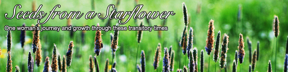 Seeds from a StarFlower