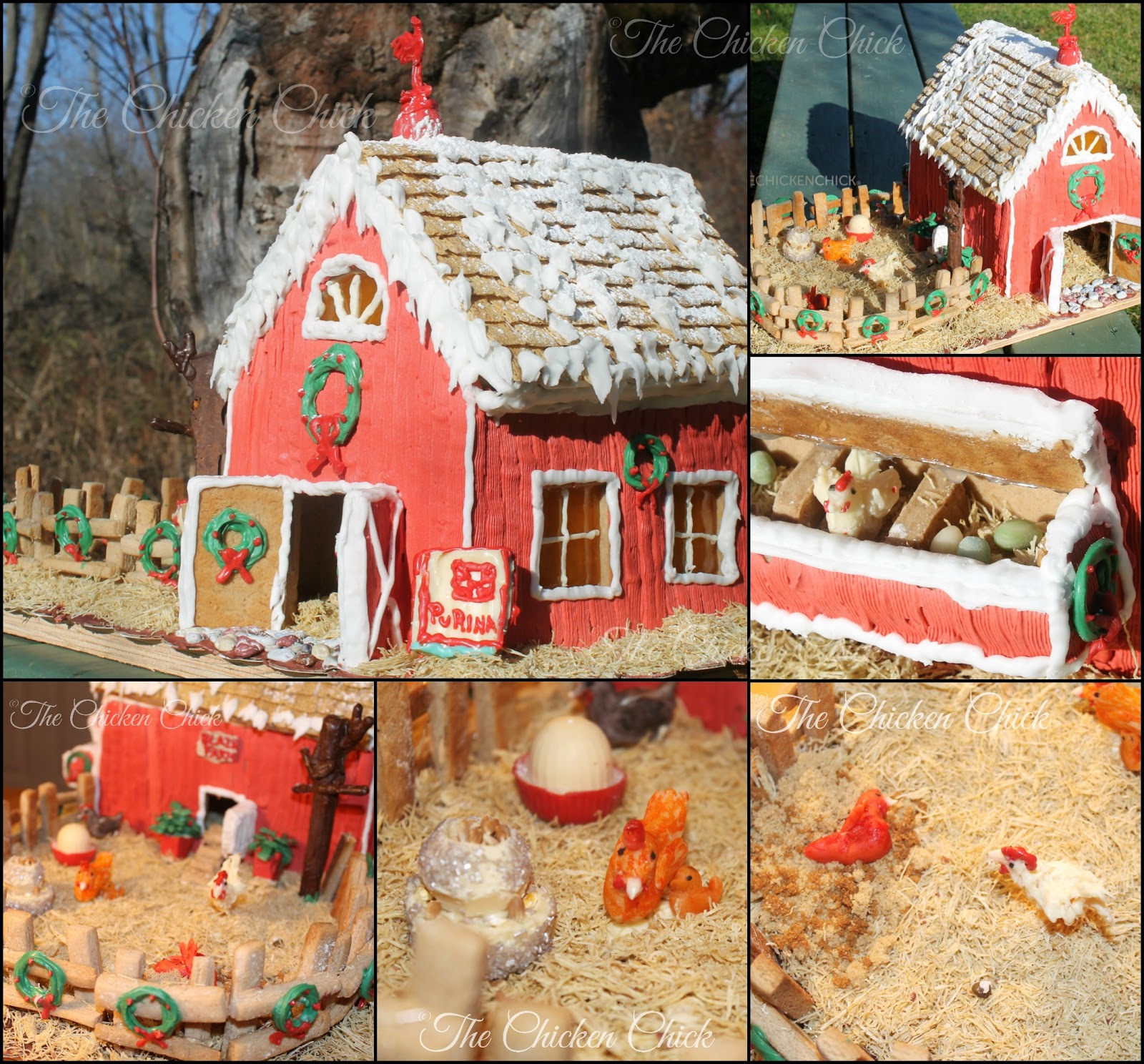 Gingerbread Chicken Coop Instructions With Video Tour The Chicken
