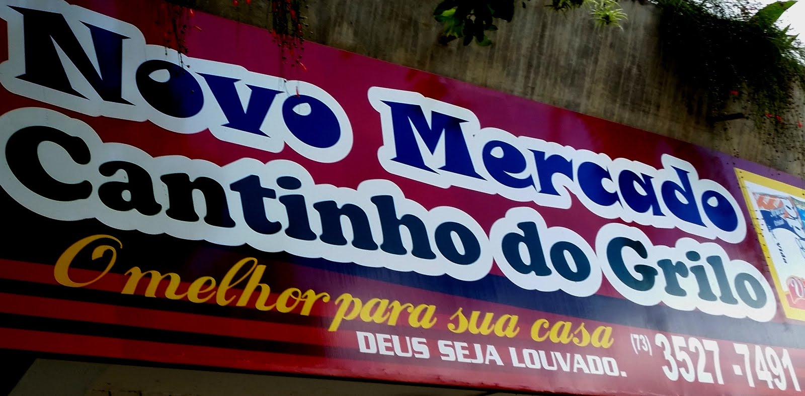 Novo Mercado Cantinho do Grilo