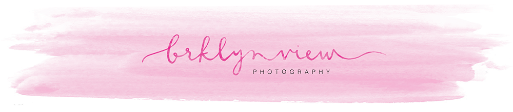 brooklyn wedding photographer : brklyn view photography