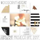 Проект жизнь 2017
