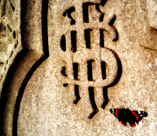 picture of grave and red admiral butterfly