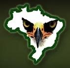 Site Aves de rapina Brasil