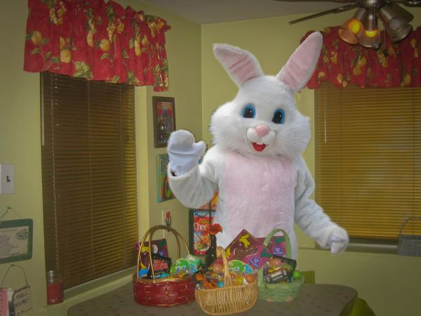Happy Easter From The Real Bunny 2 3 4 5 6 7 8 9 10 11 12 13 14 15 16 17 18 19 20 21 22 23 24 25 26