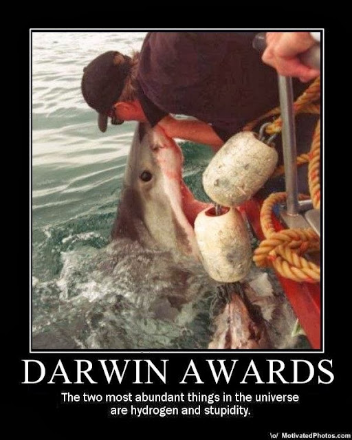 darwin awards halloween cap'n aux blog aviation avgeek pilot pilots airplane plane airline captain