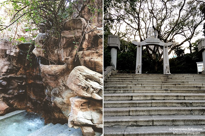 Природа Гонконга
