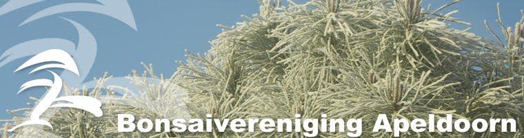 bonsai vereniging Apeldoorn